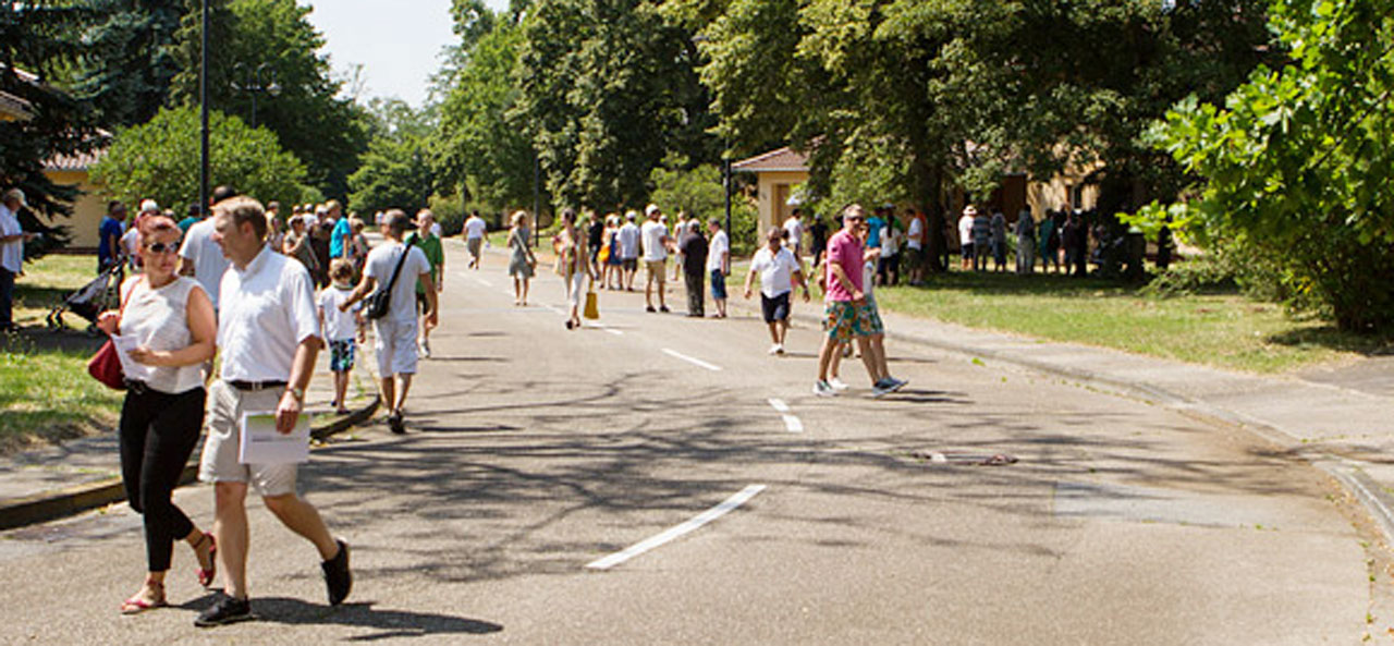 Bands und Besucher trotzten tapfer der Hitze